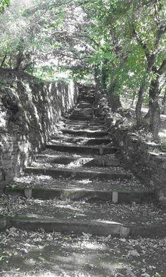 Escalera de madera  entre dos muros de piedra en el parque Marcos Cela.  Foto realizada por Zaira López López.