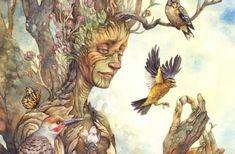 Imparate dagli alberi, lasciatevi ispirare dalla saggezza dei loro cicli, dal loro rispettoso linguaggio. Nel loro mondo ogni cosa ha il suo momento