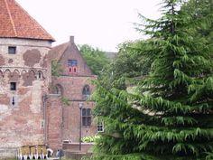 Sullo sfondo, l'antica Chiesa dei domenicani (oggi sconsacrata), dove è sepolto il Beato Alano della Rupe