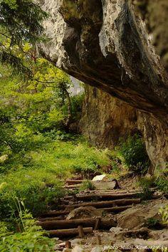 Vrátna - Terchová na Zbojníckom chodníku Bratislava, Heart Of Europe, Central Europe, Czech Republic, Amazing Nature, Homeland, Hungary, Trekking, National Parks