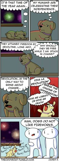That's probbably what our dogs have been thinking the whole time!