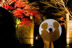 紅葉×嵐山花灯路  *elle pupa blog*