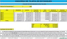 Corrida Financiera: Engorda de Tilapia en Estanques (Gratis) | Proyectos Agropecuarios