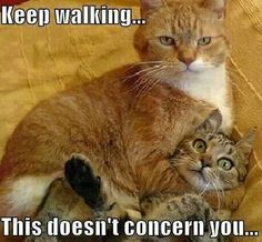 This does not concern you