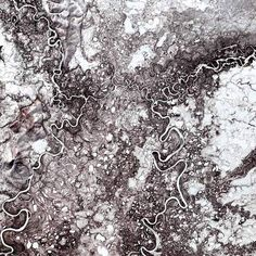 Mayn River, Russia, 2000The Mayn River is a tributary of the larger Anadyr River, which flows through the far northeastern corner of Siberia. While these rivers are frozen for about eight to nine months in a year, they are home to chum and sockeye salmon during the summer months. (Satellite image)