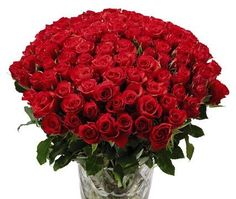 Miss You! Say It With #Roses  flora2000.com