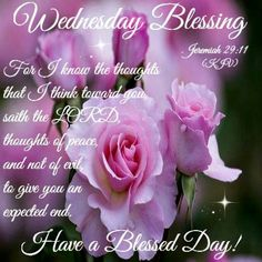 JEREMIAH  29:11     ~~~  Good Morning Everyone,  Wishing you all a very Blessed Day in the Love and Peace of JESUS!  LY