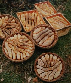 ancient bee keeping in a bee skep - various straw and wooden skeps filled with comb and honey