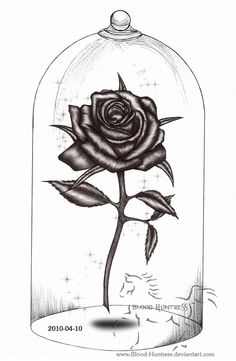 Rose Drawings | Rose Pen Drawing With Glass by ~Blood-Huntress on deviantART