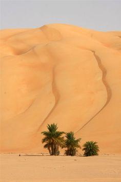 Mauritania - Dunas - The Sahara Desert