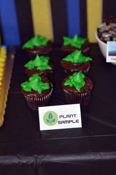 Wall-E birthday party: Wall E PLANT SAMPLE: fudge covered chocolate cupcakes