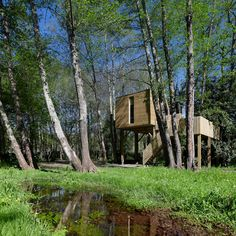 24 May 2020 - Entire home/flat for Arturo's House - All conveniences in a singular accommodation just 30 minutes from Santiago de Compostela. Cabin with jacuzzi, kitchen, fireplace, . Forest Cabin, Forest House, Jacuzzi, Treehouse Cabins, Treehouses, New Times, Glamping, Beautiful Homes, Spain