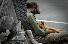 Donate to www.hopeveterinarycenter.org and help a man and his best friend