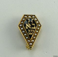 PHI OMEGA PI - 14k Gold Sorority Early DELTA ZETA PIN | eBay