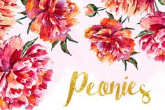 Watercolor Peonies by Lembrik's Artworks on Creative Market