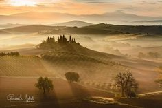 ⭐ SELECTION OF THE DAY ⭐ by #Expo #FineArt #Photography Golden sunrise  S. Quirico d'Orcia (SI) - 2015  Photo © Giovanni Modesti #Landscape