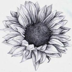 Imagem de sunflower, art, and flowers