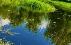 Sodybos komfortas poilsis žvejyba medžioklė gamta baldai naujienos nuotraukas
