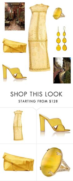 """""""Orient Express Luxury"""" by simpleelegance-558 ❤ liked on Polyvore featuring Gianvito Rossi, Diane Von Furstenberg and Misahara"""