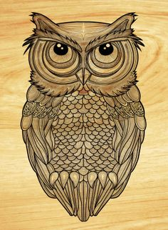 etched owl