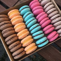 Mini cheesecakes s citronovým krémem Brownie Cupcakes, Red Velvet Cupcakes, Mini Cheesecakes, Lemon Curd, Pavlova, Hot Dog Buns, Panna Cotta, Bread, Ethnic Recipes