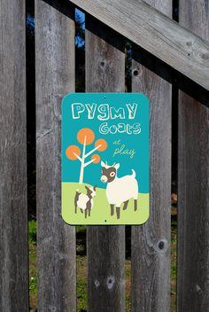 Pygmy Goats at Play  I love goats!