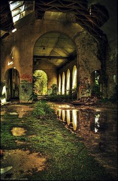 Covered in mossy greens, the abandoned factory housed many of those hiding from the burn of the...