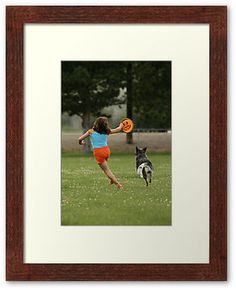 """""""Joyous Play""""  ~ Fotography by Felisa ~  A girl and her cattle dog."""
