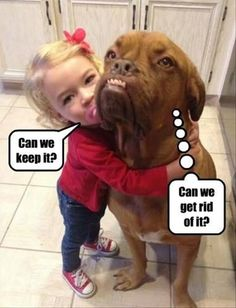 Funny Pictures of the day - (46 + new pics)