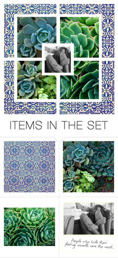 """""""wrapped up in china succulents"""" by officialanya ❤ liked on Polyvore featuring art, Collage and succulent"""