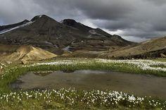 Islande_Kerlingarfjoll by sako73, via Flickr