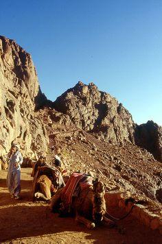 Monte Sinai . Egypt