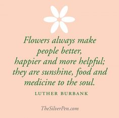 Burbank- ~American botanist, horticulturist and a pioneer in agricultural science. Creater of the Shasta Daisy, Free stone peach & over 800 variety of plants The Words, Breast Cancer Inspiration, Citation Nature, Floral Quotes, Silver Pen, Silver Lining, Garden Quotes, Garden Sayings, No Rain