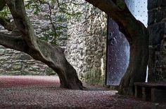 Craigmillar Castle, Edinburgh, Scotland.  Berries on the ground.  Love the door!