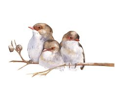 A digital downloadable print of three little Wrens that I painted in watercolor paint. This is a digital print. You can download it straight away, print it, frame it and hang it on the wall. There is no waiting and no shipment fees. If you dont have a printer you can take the file to a professional printer. This is not a listing for a physical print. You will receive a high resolution 300dpi jpg. Dimensions 8 by 10 Landscape Orientation. Please note: Colours may vary because computer…
