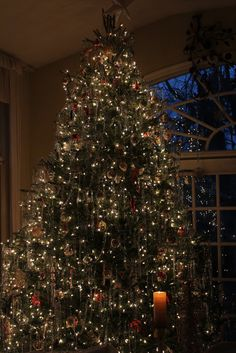 Lovely Traditional Christmas Tree