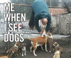 @9GAG: Me when I see dogs