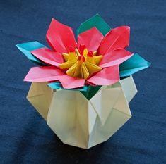 B. Veraart | Origami Sociëteit Nederland
