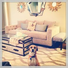 Our first home had one living room. Our new home has two. Thus, we needed a new sofa for the formal living room. Let the search begin!   My ...