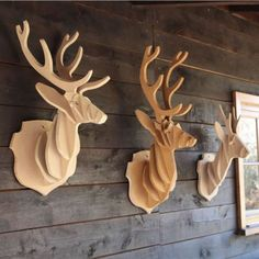 Trophés de cerfs en bois