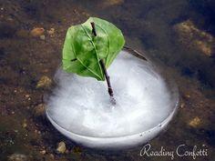 NATURAL ice boats