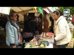 """Novedades de """"El Banquito"""" del Consejo de los Mayores - YouTube"""
