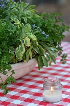 pot or bowl of planted herbs - great for summer centerpiece