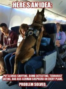 Here's an idea: Put a Drug sniffing. Bomb Detecting. Terrorist eating, Bad Ass German Shepherd on every plane. Problem Solved.