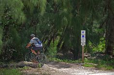 Oleta River State Park -- The park has over 10 miles of challenging, intermediate mountain bike trails. For the beginner, there are over 4 miles of novice trails and 3 miles of paved trail. The paved trail also offers great conditions for roller blading. The park is very conscious about safety on the trails and provides a bicycle helmet loaner system for those who forget their bicycle helmets.
