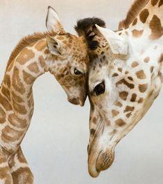 Les 21 plus belles photos d'instinct maternel que vous n'avez jamais vues