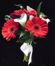 Red gerbera daisies and white calla lily handheld bouquet for  #prom by Emil J Nagengast Florist Albany, NY