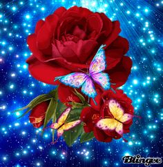Animated Roses and Butterflies | Share: ROSES N BUTTERFLIES