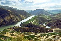 DOURO SUPERIOR - Foz da ribeira de Aguiar - Quinta da Granja Castelo Melhor, concelho de Vila Nova de Foz Côa. PORTUGAL