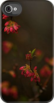 Phone case of flower buds